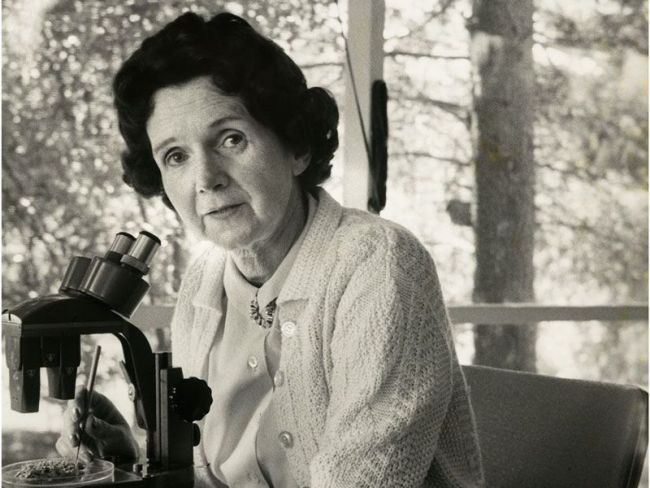 Women Scientists Rachel Carson Alfred Eisenstaedt National Portrait Gallery