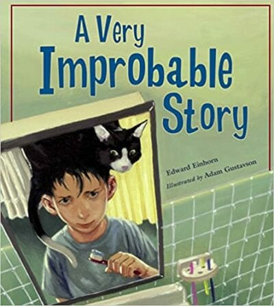 Book cover for A Very Improbable Story