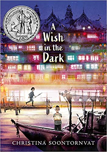 Book cover for A Wish in the Dark