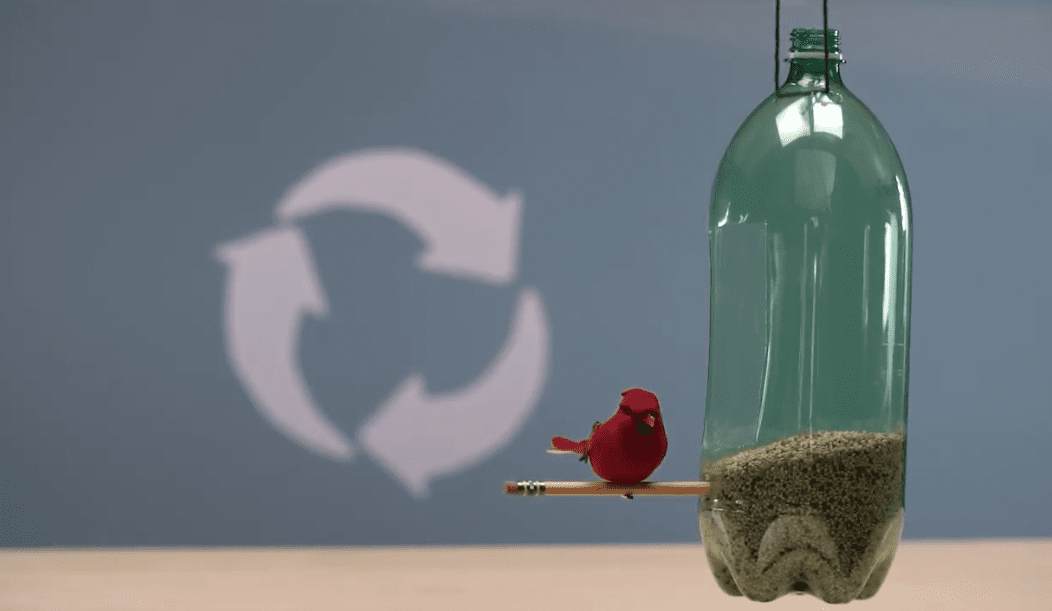 Recycled soda bottle with a bird nearby.