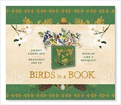 Book cover for Birds in a Book as an example of pop-up books for kids