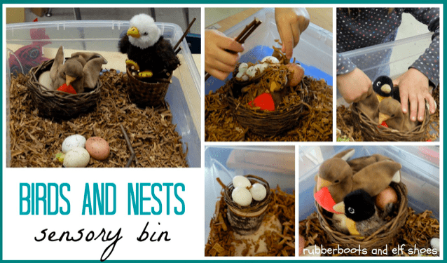 A collage of images of a sensory bin with shredded brown paper, pretend eggs, baskets used as bird nests and stuffed animal birds