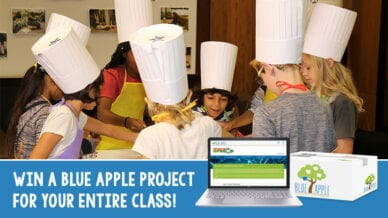 Win a Blue Apple project for the entire class.