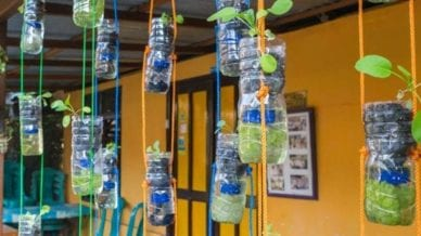 Water bottles hanging from the ceiling with colorful ropes that contain growing plants.