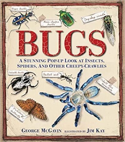 Book cover for Bugs: A Stunning Pop-Up Look at Insects, Spiders, and Other Creepy Crawlies