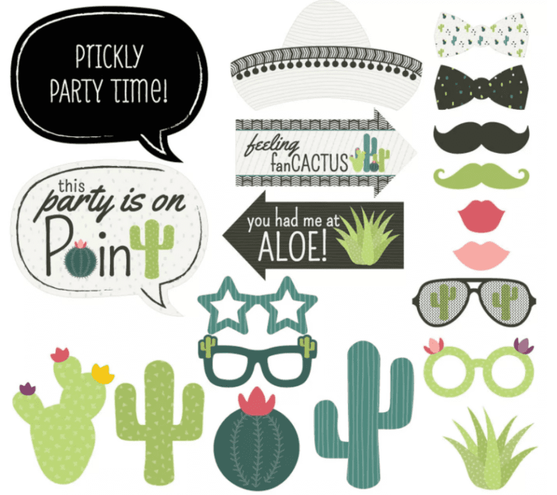 Cactus-themed photo booth party accessories