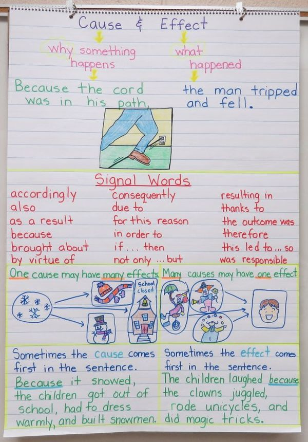 Anchor chart showing that a cause can have many effects (Cause and Effect Anchor Charts)