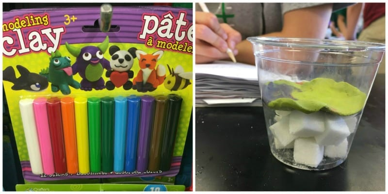 dollar store science