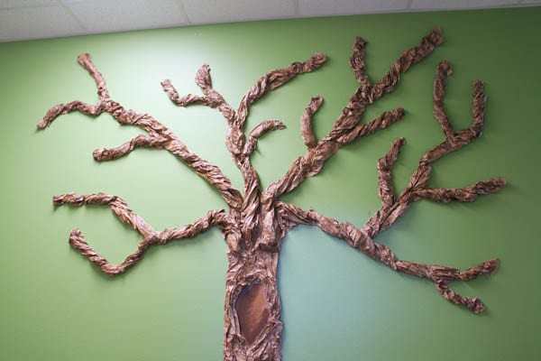 Classroom Tree Branches