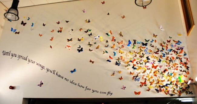 Wall hung with paper butterflies; text reads Until you spread your wings, you'll have no idea how far you can fly