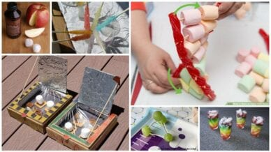 Collage of Edible Science Activities