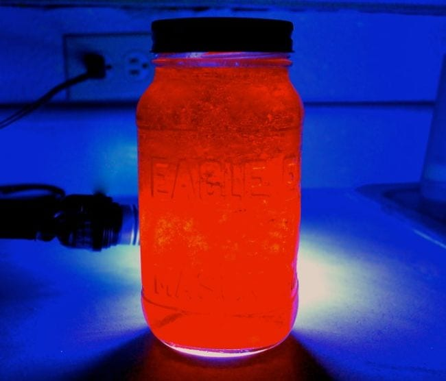 Jar of red glowing Jello under UV light (Edible Science)