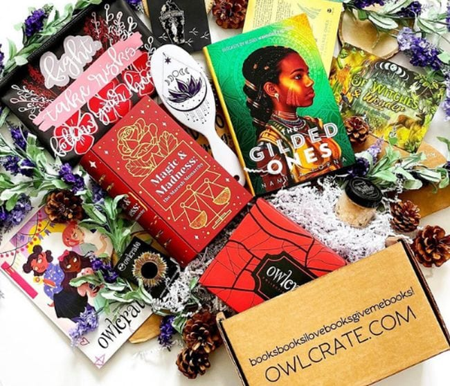 OwlCrate book subscription box with various reading related items