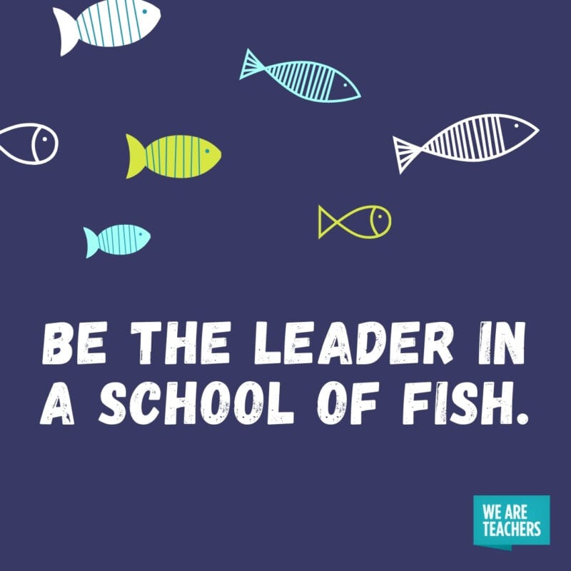 Be the leader in a school of fish.