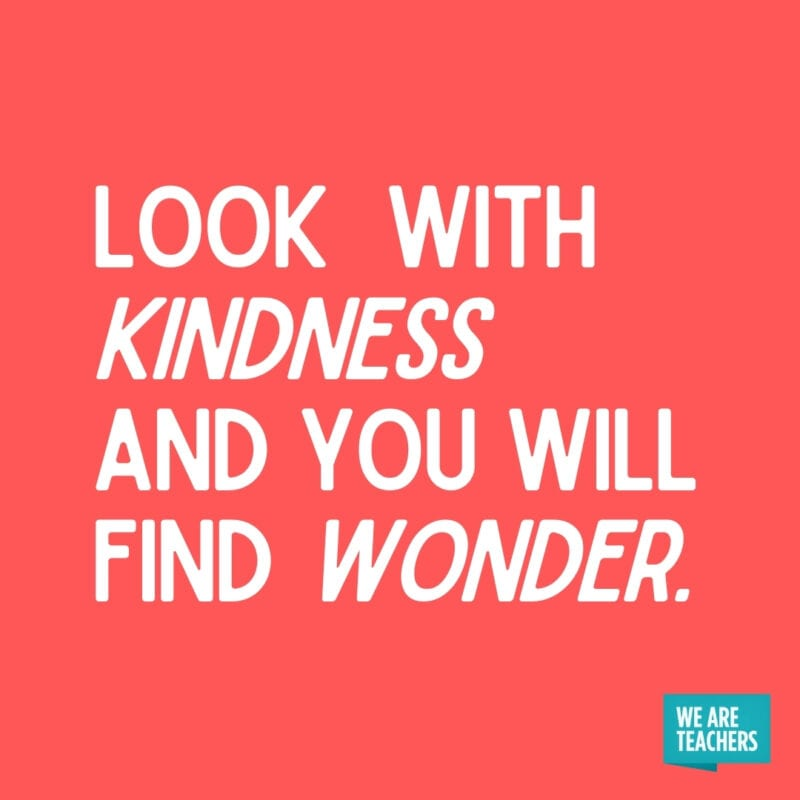 Look with kindness and you will find wonder.