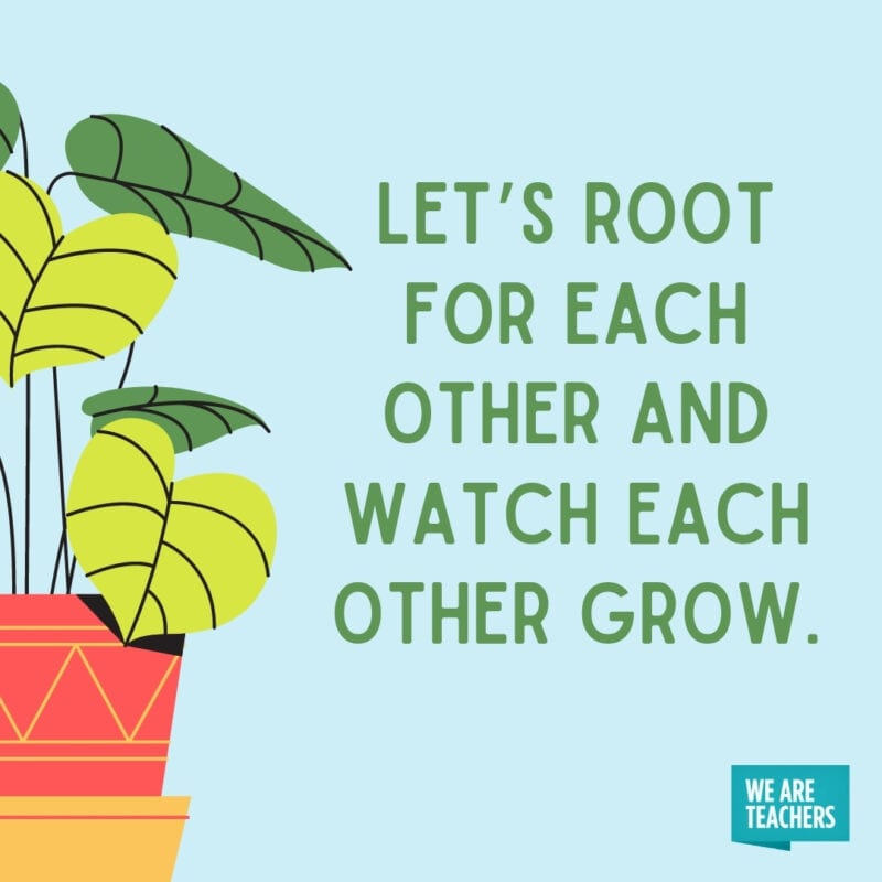 Let's root for each other and watch each other grow.