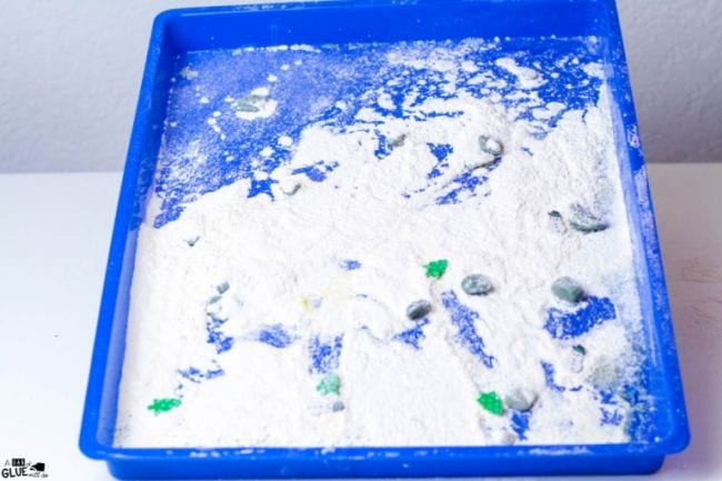 Blue tray covered in flour and small pebbles (First Grade Science Experiments)