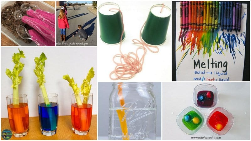 Collage of First Grade Science Experiments and Projects