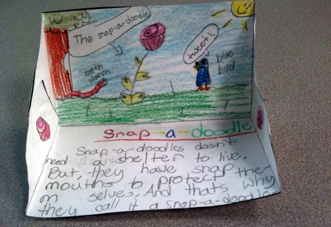Science project showing an imaginary plant called a Snap-a-Doodle