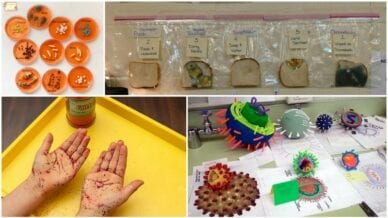 Collage of four germ science projects