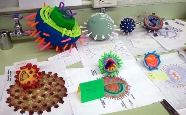 3-D models of viruses made from a variety of materials (Germ Science Projects)