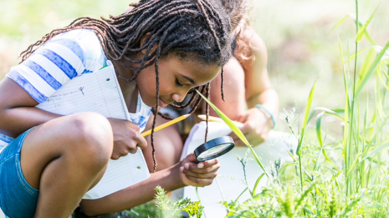 African American girl doing insect activities outdoors, bent down exploring in grass with magnifying glass