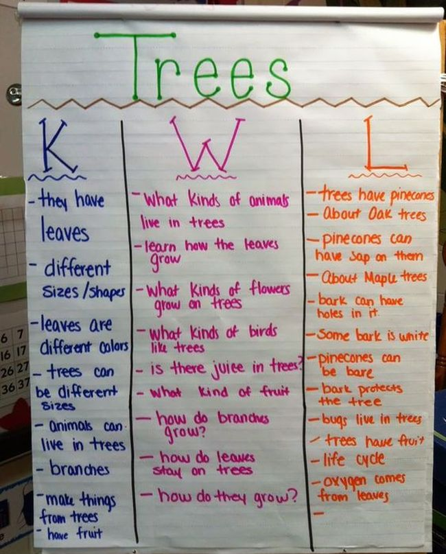 Know, Want to Know, and Learn chart about trees