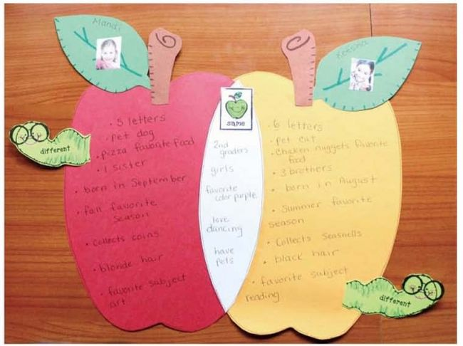 Venn diagram in the shape of two overlapping apples (Graphic Organizers)