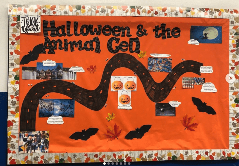 Halloween and the Animal Cell bulletin boards