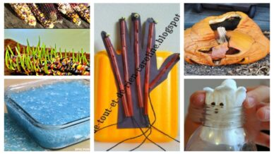 a collage of kids' halloween experiments