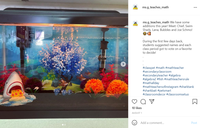 An aquarium for a classroom featuring small fish inside, colorful fake plants, and a shark eating a piece of pizza.