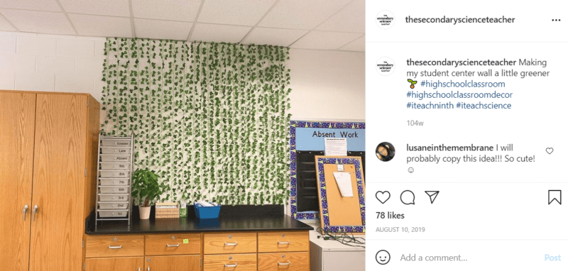 Vines hanging from the ceiling of a classroom above a countertop, , as an example of high school classroom decorations