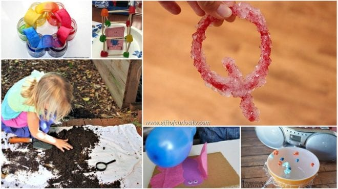 Collage of kindergarten science activities and experiments