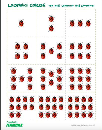 dot number cards made out of ladybugs