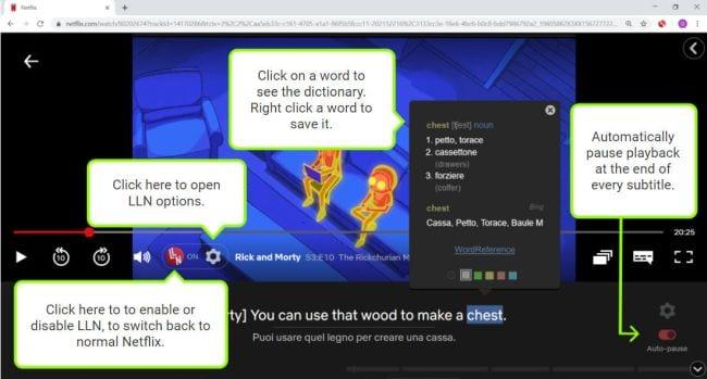 Netflix Language Learning Chrome extension screen shot