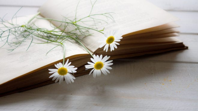 Book with pressed flowers -- poems for middle school