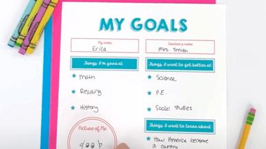 My goals worksheet filled in