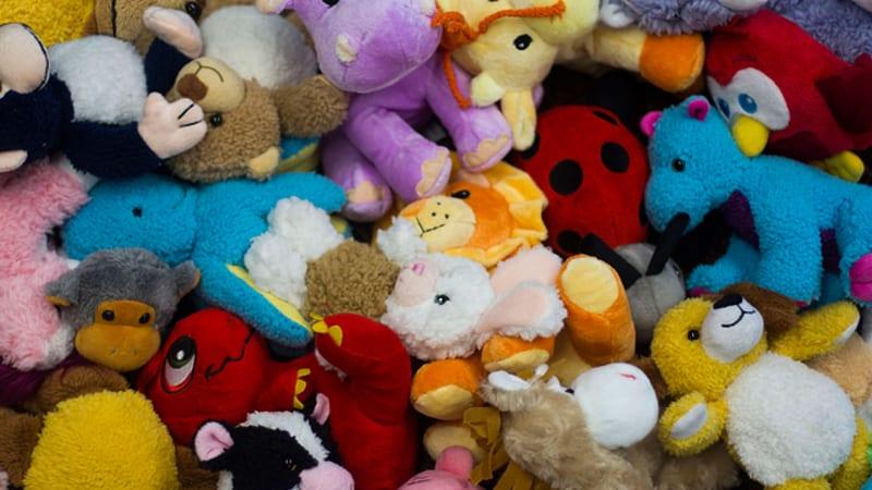 stuffed animal STEM