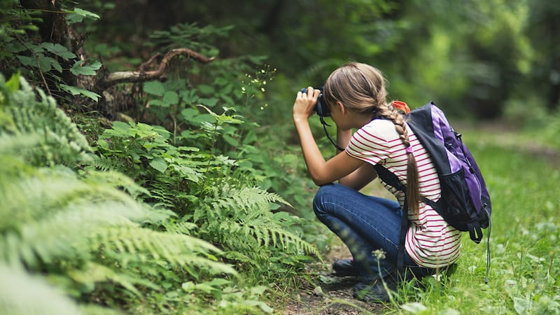 Student taking photos in the forest