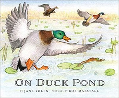 Best Second Grade Books - On Duck Pond
