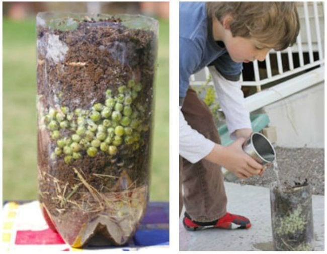 Child checking a plastic bottle containing layers of soil, vegetables, and more