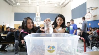 Students gather Pennies for Peace
