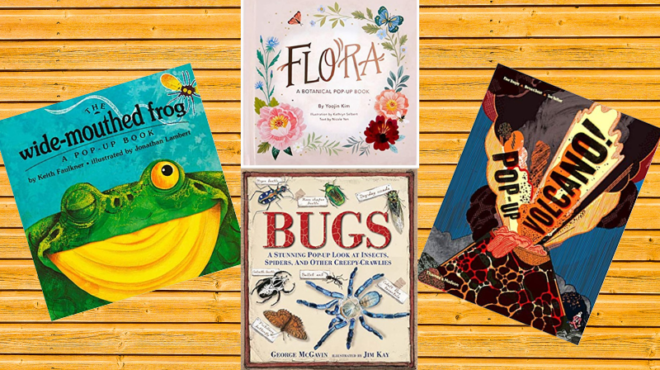 Collage of four pop-up books for kids