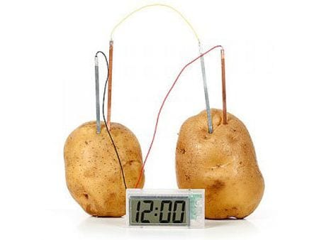 potato-battery-clock 6th Grade Science Kidzworld