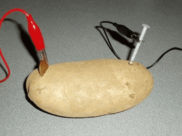 A potato being used in an electricity experiment.