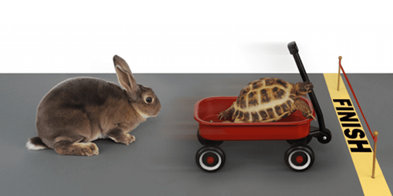 Turtle Beating Rabbit in Race