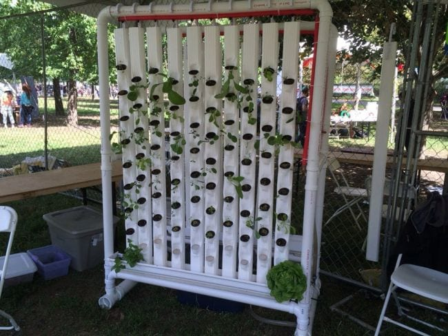 Vertical hydroponic garden made from PVC pipes and aluminum downspouts