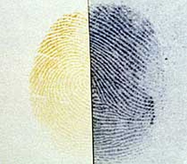 Fingerprint divided into two, one half yellow and one half black