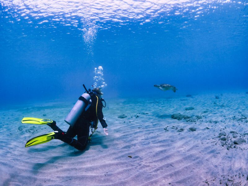 Diver at the bottom of the ocean touching sand - science careers