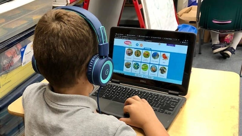 Student with headphones researching animals using laptop